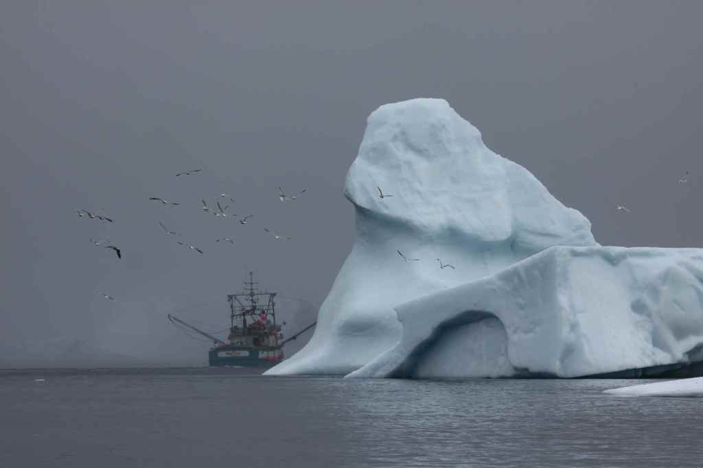 "A 65-foot fishing boat dwarfed by a ""small"" iceberg off St. Anthony, Newfoundland, Canada."