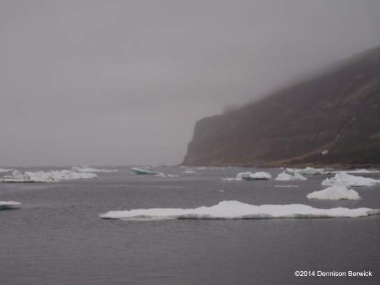 Stragglers from sea ice that is making navigation in the Strait hazardous or impossible.